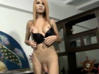 Asian tgirl strokes guys..